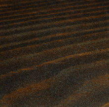 Nötbrun Lasyr